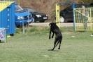 Judge 'n Play 02.03.2011