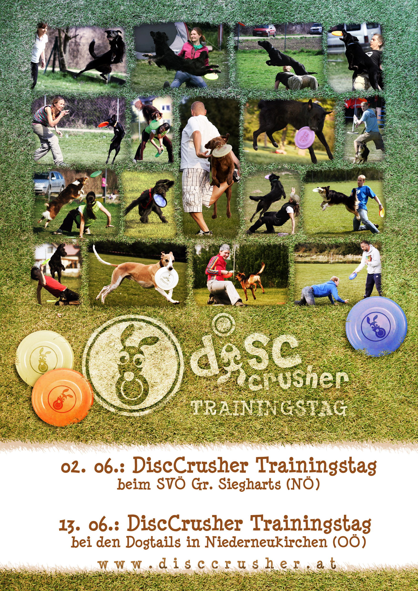 Disccrusher Trainingstage 2011